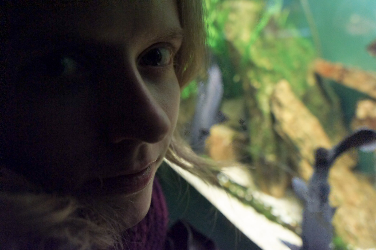 Waterman in het aquarium