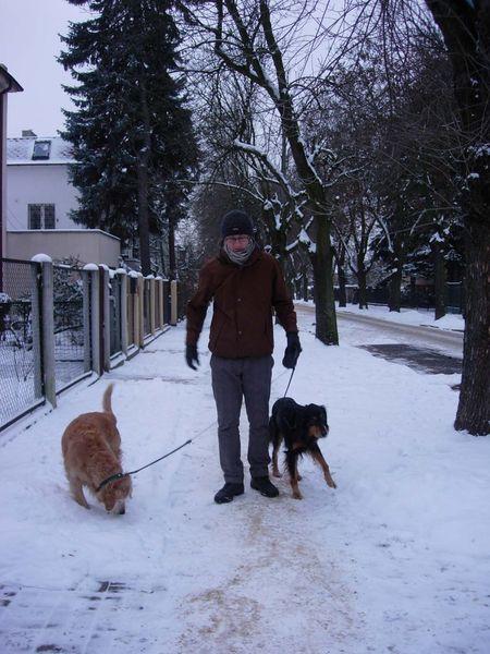 dogwalk1