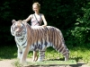 Hanne with a tiger