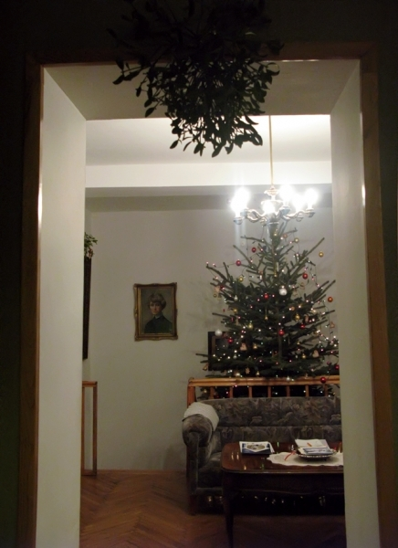 Kerstmisboom en maretak