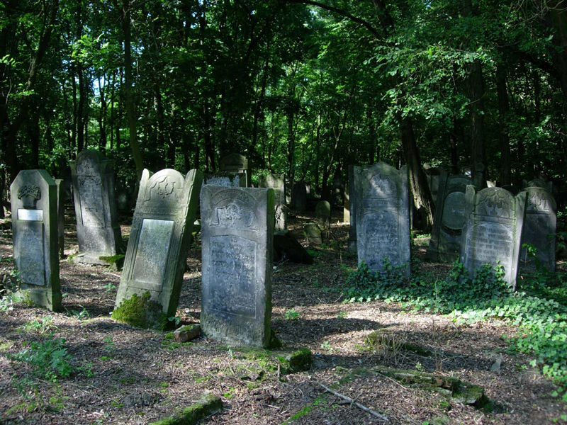 Jewish cemetary, biggest in Europe