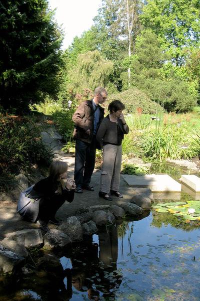 Arboretum w Rogowie - ogród alpejski