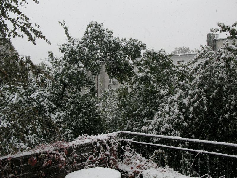 Sneeuwstorm in Lodz 14.10.2009