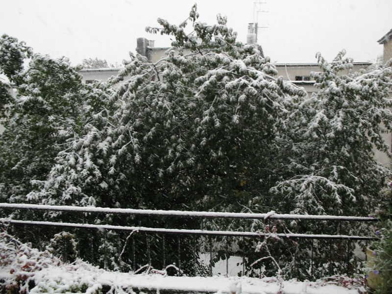 Snowstorm in Lodz 14.10.2009
