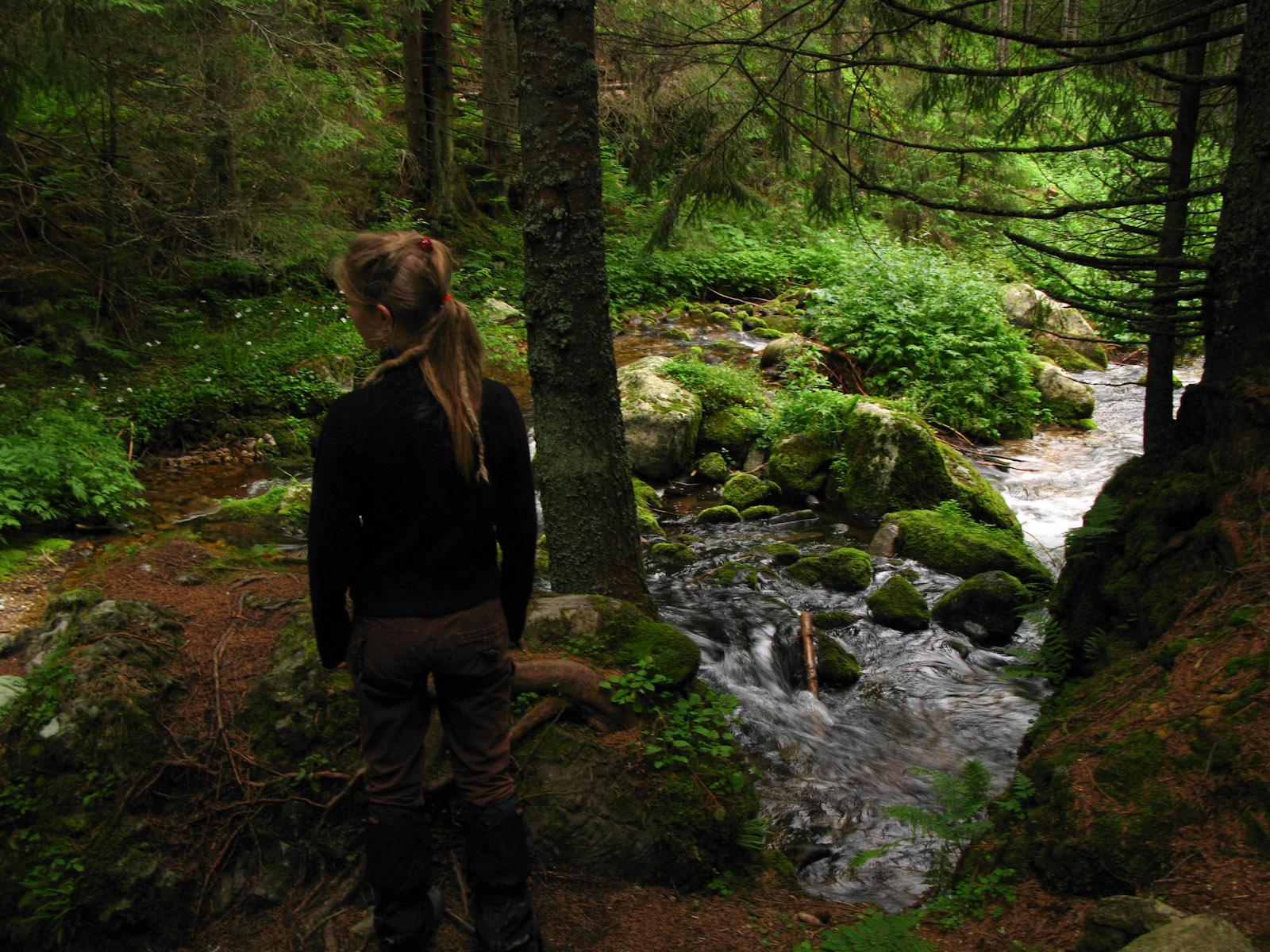 Hanne by a stream in Polish Tatra