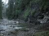 Filipczański stream