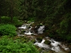 A stream in Polish Tatra
